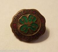 Old STATE OF NEW YORK JUNIOR PROJECT WORK Pinback Medallion 4 H Clover