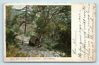 Mt Wilson, CA   PRE 1908 M RIEDER VIEW OF HALF WAY HOUSE ON TRAIL UDB POSTCARD
