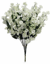 Gypsophila Flowers & Floral Décor