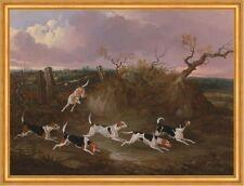 Beagles in Full Cry John Dalby Jagd Hunde Tiere Feld Rassen Hügel B A2 02619