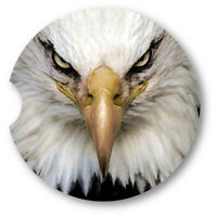 Oil Painted Style Bald Eagle Portrait Sandstone Car Coasters - Matching Pair