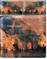 THIRSTY TIGERS BROWN 3D ANIMAL PRINT QUEEN QUILT COVER SET - STOCK CLEARANCE !!!