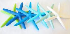 6 Starfish Wall Decor, Coastal Starfish Decor *pick any colors* by Ruby Flippers