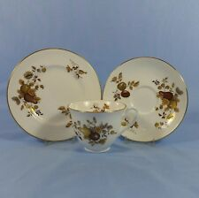 ROYAL WORCESTER HARVEST GOLD BONE CHINA 1a qualità Tazza da Té PIATTINO & Plate
