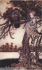 Arthur RACKHAM Peter Pan in Kensington Garden Black Crow Fairytale stampa montata