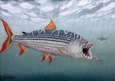 """Original-Ölbild """"Afrikanischer Tigerfisch"""" von Barry Thomas"""