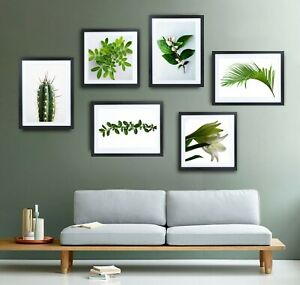 Botanical Set of Prints Pictures Art Green White Leaves Tropical Plants Trees