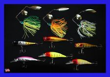Assorted 9 New Fishing Lures Crankbait, Top Water Popper, Spinner bait