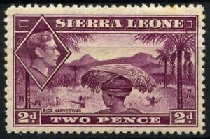 Sierra Leone 1938-44 SG#191, 2d Mauve KGVI MH Cat £50 #D58684