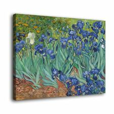 "Irises Vincent van Gogh Painting HD Canvas Print 16""x22""Home Decor  Wall Picture"