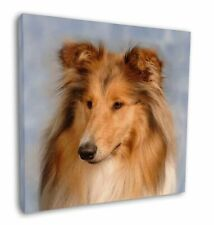 "Rough Collie Dog 12""x12"" Wall Art Canvas Decor, Picture Print, AD-RC1-C12"