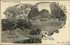 Salina KS Scenes in Oakdale Park c1910 Postcard