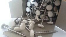 1000 x 65mm Bianco polytop plastica testa NAIL Poly Top-ACCIAIO INOX