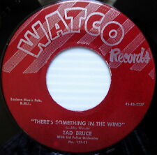 TAD BRUCE 45 There's Something In the Wind WATCO label Near Mint