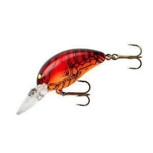 BOMBER                   MODEL A    B05                     Apple Red Crawdad