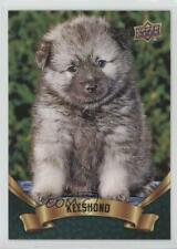 2018 Upper Deck Canine Collection Puppy Variant Keeshond #269 ub4