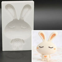 3D Rabbit Bunny Fondant Cake Mold Chocolate Decor Tool Sugarcraft Mould Pro AU