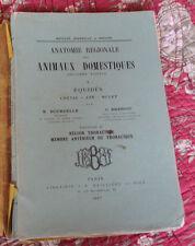 1937 Anatomie équidés cheval âne mulet N°I thorax membre antérieur animaux