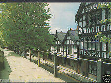 Cheshire Postcard - City Walls and 'Nine Houses', Park Street, Chester   RR195