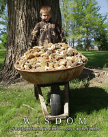 Fresh Morel Mushroom Motivational Poster Art Print Grandpa Gift Kit Wall Decor