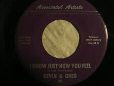 "KEVIN & GREG ""I Know Just How You Feel"" b/w ""You're Still On My Mind"" AA-464 VG+"