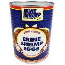Brine Shrimp Hatching Eggs 50 Grams - 90% Hatch Rate