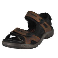 ECCO USA SHOES: Sunny Day Style: New Sandals for Her. Free