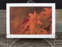 Autumn Leaf Art Print, 5x7, Thick Eggshell Texture Matte Paper, Ready to Frame