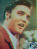 ELVIS PRESLEY CARTE POSTALE POSTCARD X359
