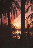 B40966 Shatt Al Arab Basrah   multiviews