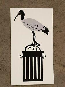 Bin Chicken Fridge Magnet, Ibis Bird