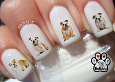 English Bulldog Nail Art Stickers Transfers Decals Set of 58