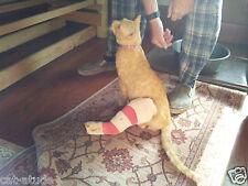 DONATION FOR RESCUE SANCTUARY ANIMALS CATS DOGS HORSES OKEYS STOR501(C)(3)