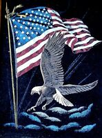 Eagle American Flag Black Velvet Kitschy Vintage Picture in Wood Frame America