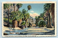 Palm Springs, CA   ALONG THE STREAM IN PALM CANYON STEPHEN WILLARD POSTCARD