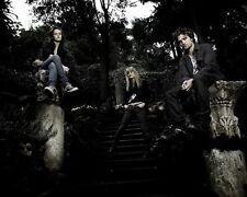 Twilight [Cast] (42131) 8x10 Photo
