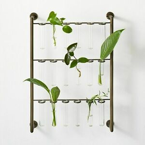 New Hilton Carter Target Propagation Station Set SOLD OUT ~ Gorgeous!