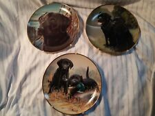 Franklin Mint Plates: Black Lab Dogs Limited Edition