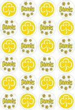 24 Brownies Girl Guides Cupcake Fairy Cake Toppers Edible Rice Wafer Paper