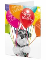 HAPPY BIRTHDAY black & white miniature Schnauzer dog with colourful balloons