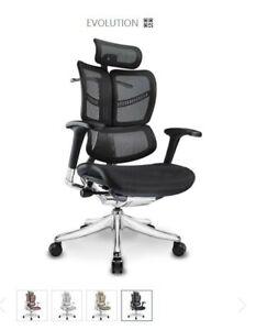 Ergomax Evolution Ergonomic Adjustable Executive Chair