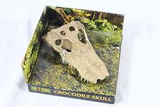 Exo Terra- Crocodile Skull for Reptiles- Scenery