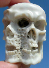 Schädel , Januskopf , skull aus Horn geschnitzt memento mori