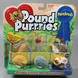 Vintage Pound Purries Purebreds Tiny Mini Lot - 3 Ginger Calico Kittens New NOS