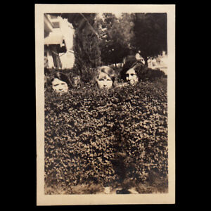 SECRET LESBIAN BUSH SANCTUARY PRIVATE WOMEN POKE HEADS  ~ 1920s VINTAGE PHOTO