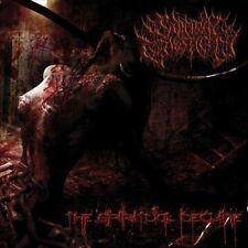 Suicidal Causticity - The Spiritual Decline CD 2013 brutal death metal Italy