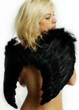 Angel Wings in Black Feather