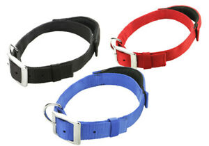 Adjustable Collar Dog Puppy Nylon Built In Leash Strong Bright Patento