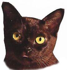 CAT: BLACK HEAD Fabric Quilt Set - Twelve Identical 6 in squares