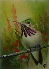 Hand Painted Original ACEO Oil Bird Wildlife  CALLIOPE HUMMINGBIRD Signed by JV